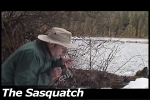 The Sasquatch
